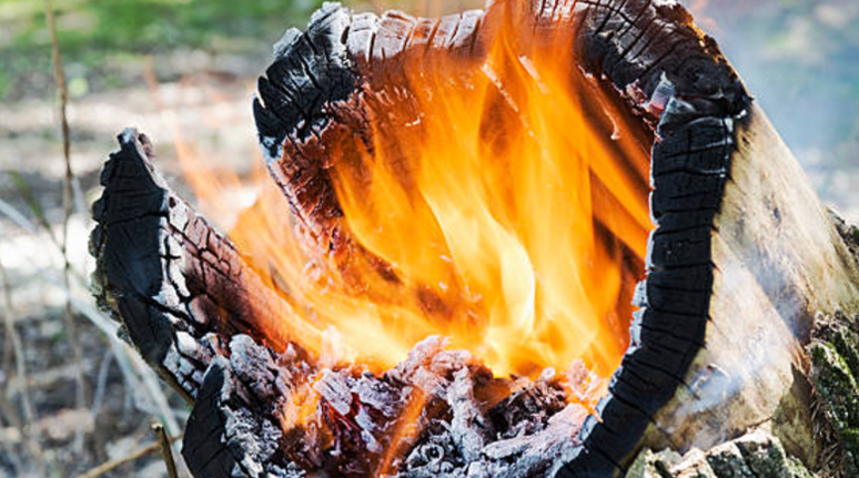 how to burn a stump with diesel